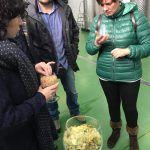 Visita y Degustación de Cerveza Artesanal