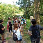 Ruta-Taller Identificación de Plantas Silvestres
